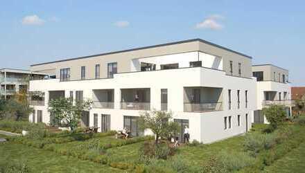 Neubau: moderne Gewerbeeinheit auf dem Landesgartenschaugelände