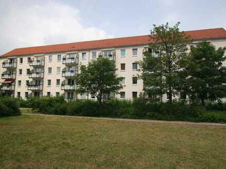 Geräumige 3 Raumwohnung in Südbereich mit Balkon