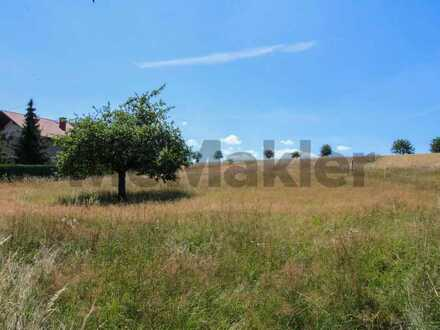 Familienidyll im Hunsrück: Großes, vollerschlossenes Baugrundstück im schönen Morbach