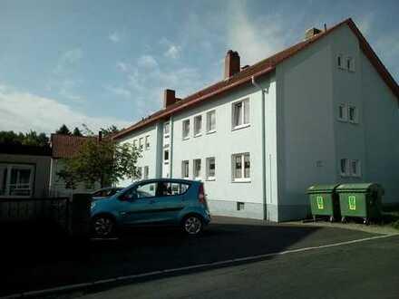 2 Zimmer Wohnung mit Stellplatz vor dem Haus und Balkon Schwedenofen mgl