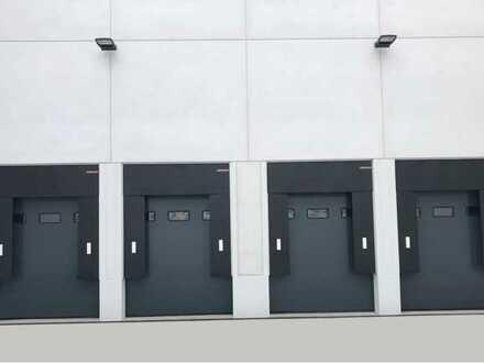 """""""BAUMÜLLER & CO."""" - ca. 15.000 m² Logistikfläche - Überladedrücken + ebenerdige Sektionaltore"""