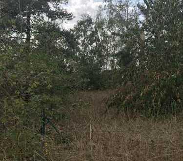 Grundstück mit Baumbestand in Dresden OT Weixdorf zu verkaufen !
