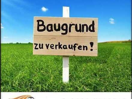 * * * Baugrund am Weintor in Schweigen-Rechtenbach * * *