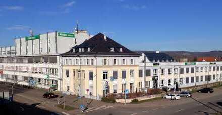 Büro-Loft 800 m² im EG im Kreativ-Areal, Glasfaser-Anschluss, Nähe S-Bahn - Provisionsfrei