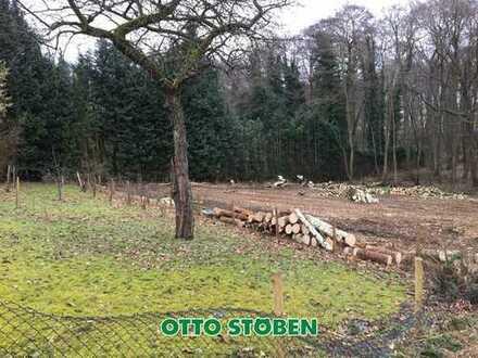 Baugrundstück in Plön! Otto Stöben GmbH