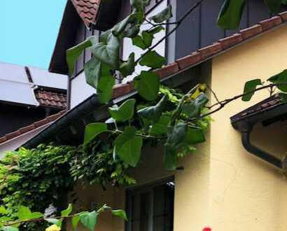 Fröhliches Reihenmittelhaus in Radolfzell
