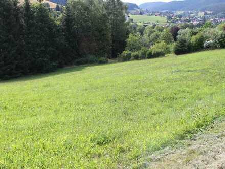 Sternedorf Baiersbronn! Vielseitig nutzbares Grundstück