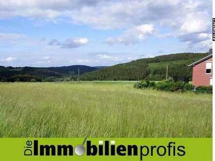 Attraktives Grundstück in einem Ortsteil vom Staatsbad Bad Steben