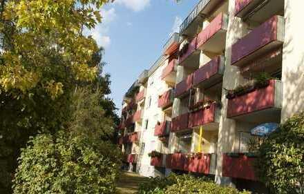 Vollständig renovierte 2-Zimmer-Wohnung mit Balkon und Einbauküche in Ingelheim am Rhein