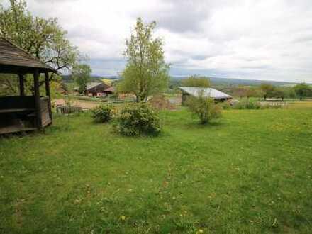 Anwesen | Mehrfamilienhaus | 10.000 qm Grund | Photovoltaik | Tierhaltung möglich
