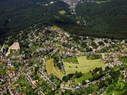Doppelhausgrundstück in schöner Lage von Wilhelmsfeld
