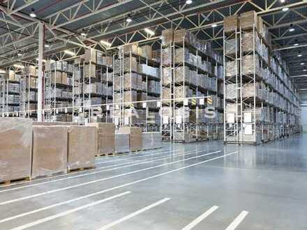 NEUBAU/PROVISIONSFREI: Ca. 20.000 qm Lager / Logistik   ca. 12,00 m UKB   Rampe + ebenerdig