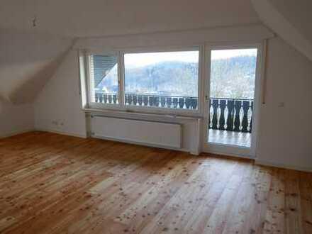 Erstbezug nach Sanierung: Helle, gemütliche 3-Zimmer-Wohnung mit Balkon und Panoramablick