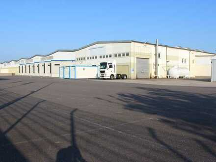 PROVISIONSFREI! 3300 m² befestigte Freifläche - nicht überdacht - ab sofort