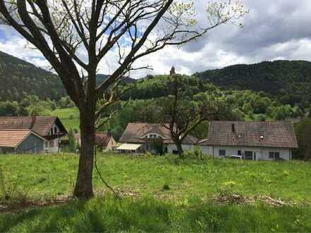 Großes Baugrundstück mit Blick zur Burg Berwartstein