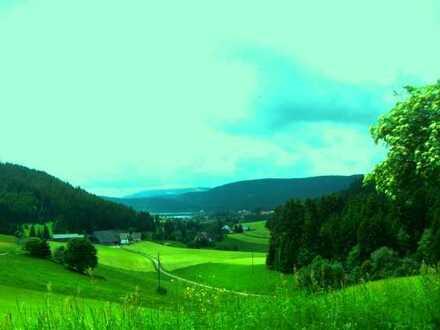 Nahe Freiburg: Komfortable Hotelanlage mit 10.000 qm Grundstück, hochwertige Ausstattung (3-4*) Spa,