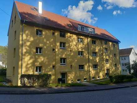 RESERVIERT - Sanierte EG-Wohnung mit zwei Zimmern sowie Balkon und EBK in Königsbronn