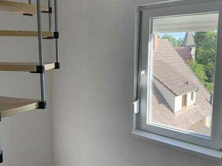Erstbezug nach Sanierung: preiswerte, geräumige 2-Zimmer-Wohnung in Dietersweiler 01723559868