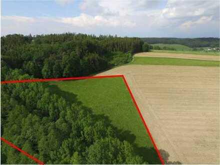 ... Gelegenheit!! - ca. 11.000 m² landwirtschaftliches Grundstück bei Aschau a. Inn ...