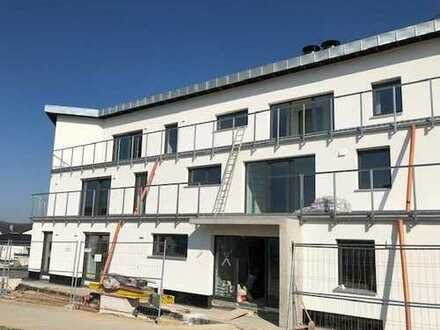NEUBAU: Barrierefreie 3 Zi. ETW mit 44 qm Terrassenbalkon in Altdorf / Wohnung kaufen