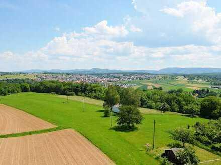 4 Zi-Wohnung mit gigantischer Aussicht übers Neckartal