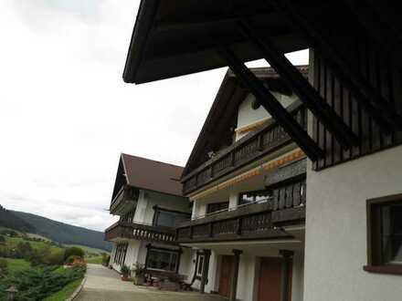 Schöne 1-Zimmerwohnung in idyllischer Lage in Baiersbronn