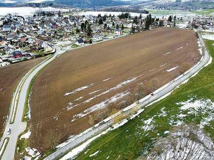 3,8 ha unbebautes Grundstück