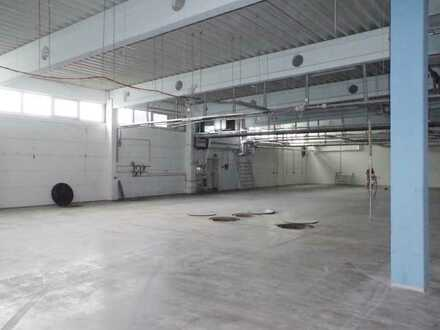 Modernisierte Hallengewerbe- sowie Büroflächen in Hoppegarten - ab Frühjahr 2021 zu vermieten