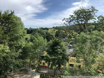 Helle drei Raum-Wohnung mit toller Aussicht im Zentrum von 01773 Altenberg