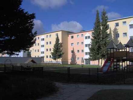 Großzügige 5-Zimmerwohnung in Alt-Lotte zu vermieten!