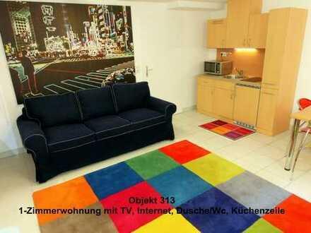 möblierte 1-Zimwhg. mit Wlan, TV, Küche, Du/Wc und flexibel mietbar, online buchbar