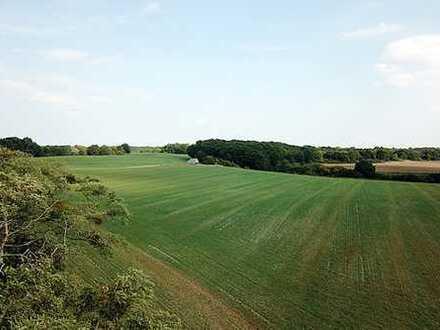 0,5 ha Landwirtschaftsfläche