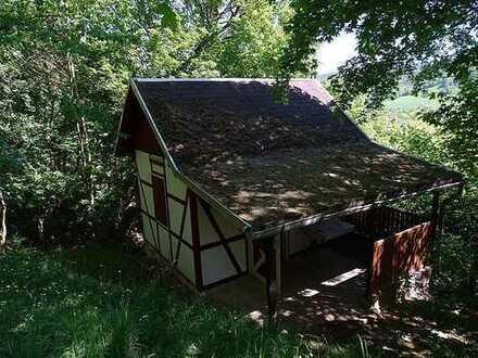 Uhlstädt,1,2 ha Wald mit kleiner Hütte