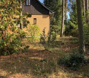 """Gepflegtes """"Mini""""-Haus mit 2 Etagen in Barnim (Kreis), Biesenthal"""