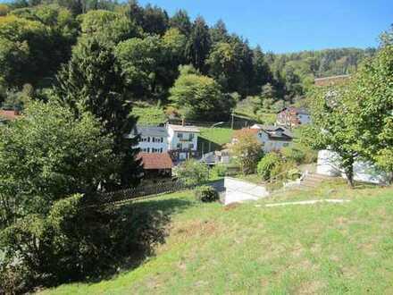 Bauplatz in Heidelberg Peterstal, schöne Aussicht, frei, 506qm , für EFH