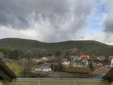 Tolle Eigentums- oder Ferienwohnung im Pfälzer Wald