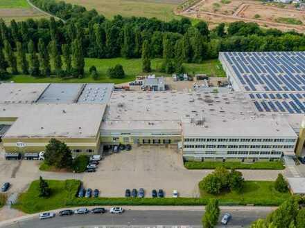 Großzügige Lager/Logistikflächen mit 13 Rampen und Regalsysteme Nahe Bad Kreuznach
