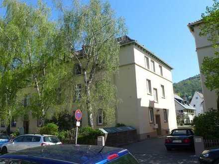 Neuenheim, 2 Zimmer, löffelfertig möbiliert, 1 km Uni, 400 m Neckar