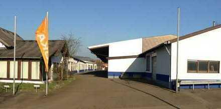 9 Hallen ab 300 qm, Büros (z.T. Wintergarten+Klima) ab 100 qm, Region SB/HOM, www.gic-gersheim.de