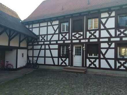 ***Historische Villa in der Mühlen - Residenz von Eggenstein**