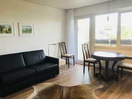 Schönes möbliertes 1-Zimmer-Apartment mit Balkon in Leonberg-Warmbronn - ab 15. Oktober