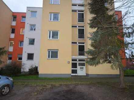 Komm herein und fühl dich daheim! 3-Zimmer Erdgeschosswohnung