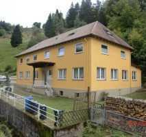 4-Zimmer Wohnung in Schönau!
