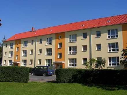gemütliche 3-Raum-Wohnung im schönen Westviertel