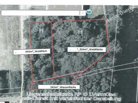 Landwirtschaftliches Gartengrundstück/Waldfläche