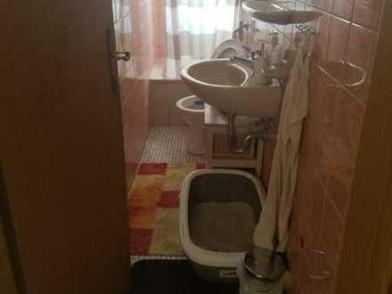 16m2 Zimmer mit 2 Katzen und guter Umgebung