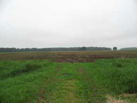 Acker- und Waldflächen in Südwest Mecklenburg