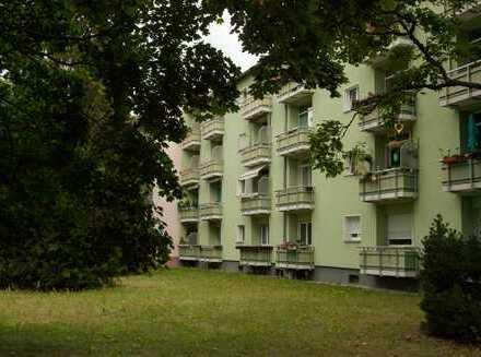 Sehr aufwendig sanierte Wohnung im zentralen Lakwitz - sehr ruhig und sonnig - F R E I