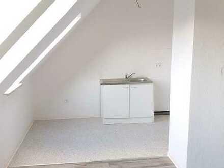 +++Viel Platz unter den Dächern Flensburgs+++