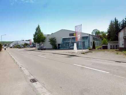 Ausstellungs- und Lagerhalle im Handelsumfeld